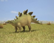3D model of Stegosaurus