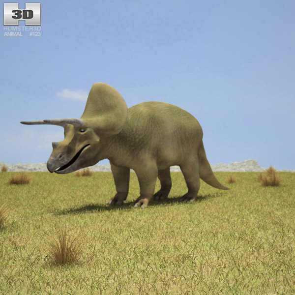 Triceratops 3d model