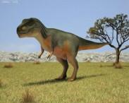 3D model of Tyrannosaurus