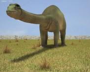 3D model of Apatosaurus