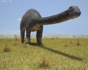 3D model of Diplodocus