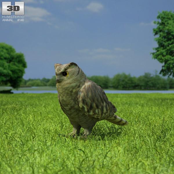 3D model of Eurasian Eagle-Owl