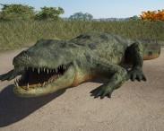 3D model of Common Crocodile HD