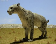 3D model of Homotherium