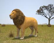 3D model of Lion