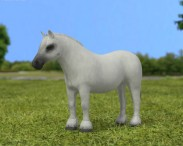 3D model of Pony