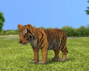 3D model of Tiger Cub