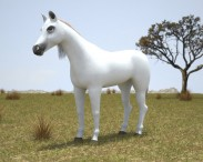 3D model of Arabian Horse
