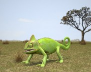3D model of Veiled Chameleon